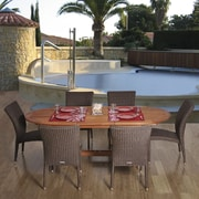 International Home Miami Amazonia 7 Piece Dining Set; 2 Arm Chairs & 4 Armless Chairs