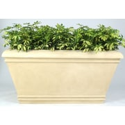 Allied Molded Products Cezar Rectangular Planter Box; Candy Apple