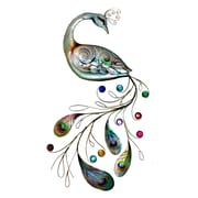 Eangee Home Design Peacock Tail Wall Decor Multicolored (M714136)