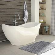 A&E Bath and Shower Salacia 67'' x 28'' Soaking Bathtub Kit