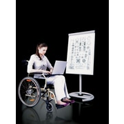 MiEN Multi-functional Mobile Free-Standing Whiteboard, 6' x 2'