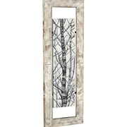 Majestic Mirror Tall Mixed Media Tree Branch Art Floating in Wood Frame