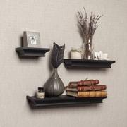 DanyaB Cornice 3 Piece Ledge Floating Shelf Set; Black
