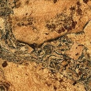 Albero Valley 11-7/8'' Cork Hardwood Flooring in Burl with Charcoal Tone