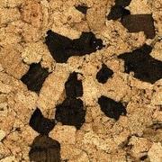 Albero Valley 11-7/8'' Cork Hardwood Flooring in Hints of Cocoa