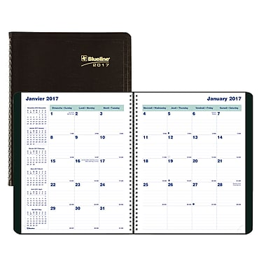 Blueline® 2016/2017 Monthly Planner, 9-1/4