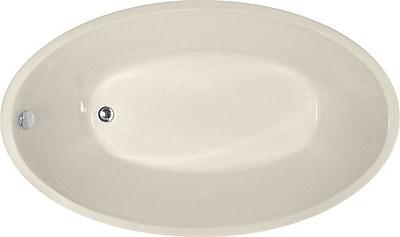 Hydro Systems Designer Carli 60'' x 36'' Soaking Bathtub; Biscuit WYF078278635659