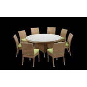 Rattan Outdoor Furniture Brighton 9 Piece Dining Set with Cushions; Green