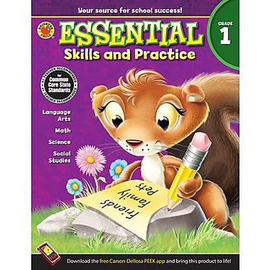 Livre numérique : Brighter Child� -- Essential Skills and Practice 704466-EB, 1re année