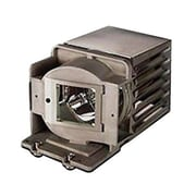eReplacements 180 W Replacement Projector Lamp for InFocus® IN122, Black (SP-LAMP-070-ER)