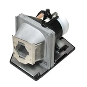 eReplacements 230 W Replacement Projector Lamp for Optoma HD HD6800, Silver (BL-FU220A-ER)