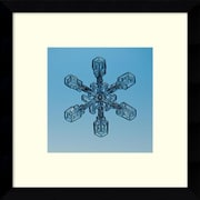 "Amanti Art Steve Gettle 'Snowflake seen through microscope' Framed Art Print 11"" x 11"" Inch Overall (DSW1421479)"