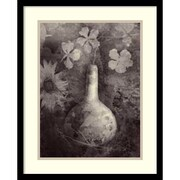 Amanti Art Elena Ray 'Gourd II' Art Print 17 x 21 in. Black Satin Wood Frame (DSW1421240)