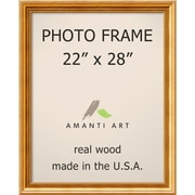 Townhouse Gold Photo Frame 25 x 31-inch (DSW1385309)