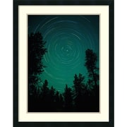 "Fred Hirschmann 'Pines Against Night Sky under North Star, Yellowstone National Park' Framed Art Print 24"" x 30"" (DSW2971920)"
