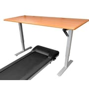 iMovR Ellure Height Adjustable Standing Desk; Hayward Cherry / Silver