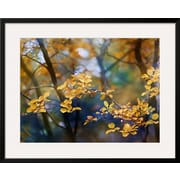 "Art.com Ursula Abresch 'Autumn Leaves' 31"" x 25"" Print (10652431)"