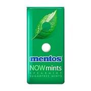 Mentos® Now Mint, 50 Serve, Spearmint (PVM80409)