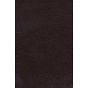 Charles F. Stanley Life Principles Bible-NKJV, Hardcover (9780718013240)