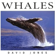 Whales, Hardcover (9781552856659)