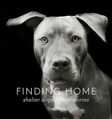 Finding Home: Shelter Dogs and Their Stories,