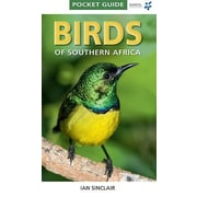 Birds of Southern Africa: Pocket Guide, Paperback (9781770077690)