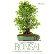 Bonsai, Hardcover (9788854408432)