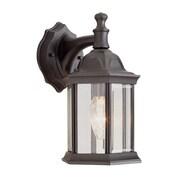 TransGlobe Lighting Outdoor 1 Light Outdoor Wall Lantern; Swedish Iron