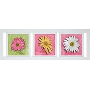 Pictures and Mirrors Floral Trio Framed Wall Art