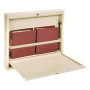 Omnimed Large Deluxe Manual Close Wall Desk - Beige (291561-BG)