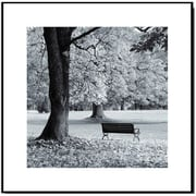 Elementem Photography Wood Mounted Park Bench #1 Framed Photographic Print