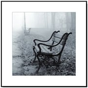 Elementem Photography Wood Mounted Park Bench #2 Framed Photographic Print