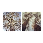 3 Panel Photo Branches 2 Piece Photographic Print On Wrapped Canvas Set