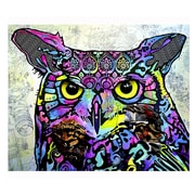 Picture it on Canvas 'Owl Colorful Animals' Graphic Art