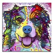 Picture it on Canvas 'Colorful Australian Shepherd' Graphic Art