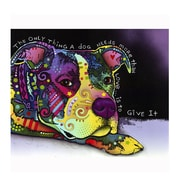 Picture it on Canvas 'Give It Colorful Animals' Graphic Art