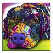 Picture it on Canvas 'Colorful Labrador' Graphic Art
