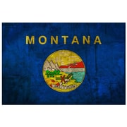 Picture it on Canvas Montana State Flag Wall Decal