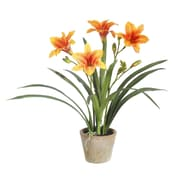 Winward Designs Day Lily Desk Top Plant in Pot; Yellow Gold