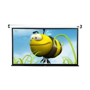 Elite Screens White Electric Projection Screen; 100'' Diagonal in White Case