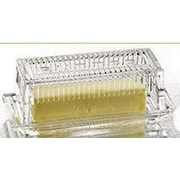 Fifth Avenue Crystal Genevieve Butter Dishes