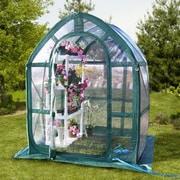 Flowerhouse PlantHouse 5 Ft. W x 5 Ft. D Greenhouse