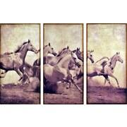 Empire Art Direct ''Stampeding Herd'' 3 Piece Photographic Print Set on Canvas