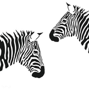 Design With Vinyl Zebra Zoo Animal Wild Picture Art Design Girls Bedroom Home Decor Wall Decal