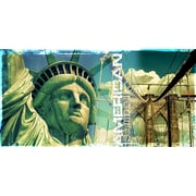 TAF DECOR Symbol of Freedom Graphic Art on Canvas