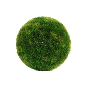 Urban Trends Round Boxwood Ball Decor