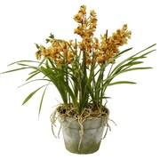Jane Seymour Botanicals Cymbidium Orchids in Terracotta Pot
