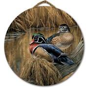 WGI GALLERY 'Back Waters Wood Duck' Painting Print on Wood