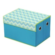 Bintopia Storage Box; Cyan Blue/Green