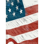 """2017 TF Publishing 10.25"""" x 7.5"""" America Simplicity Planner 12 Month (17-4096)"""